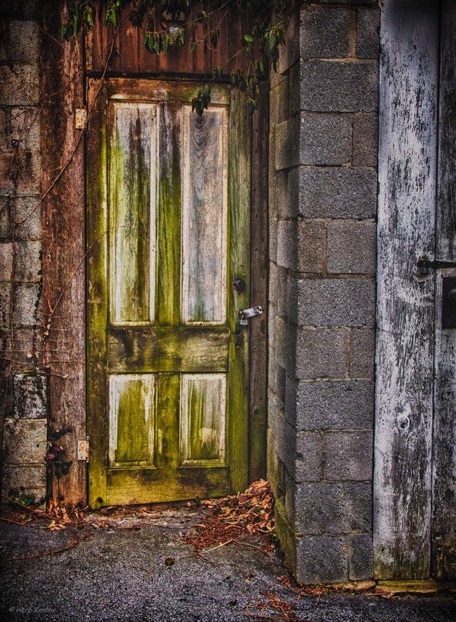 """""""Mystery Door"""""""