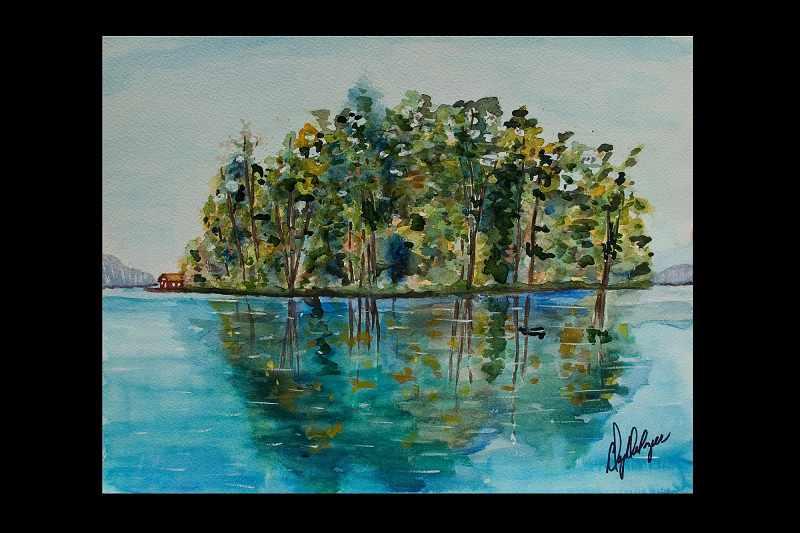 """""""New York's Adirondacks Island"""""""