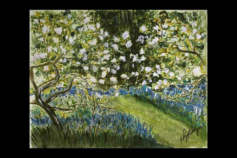 """""""Spring in the Berkshires"""""""