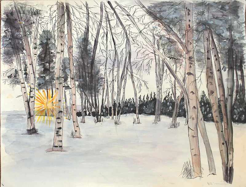 """""""The Birches of Vermont"""""""