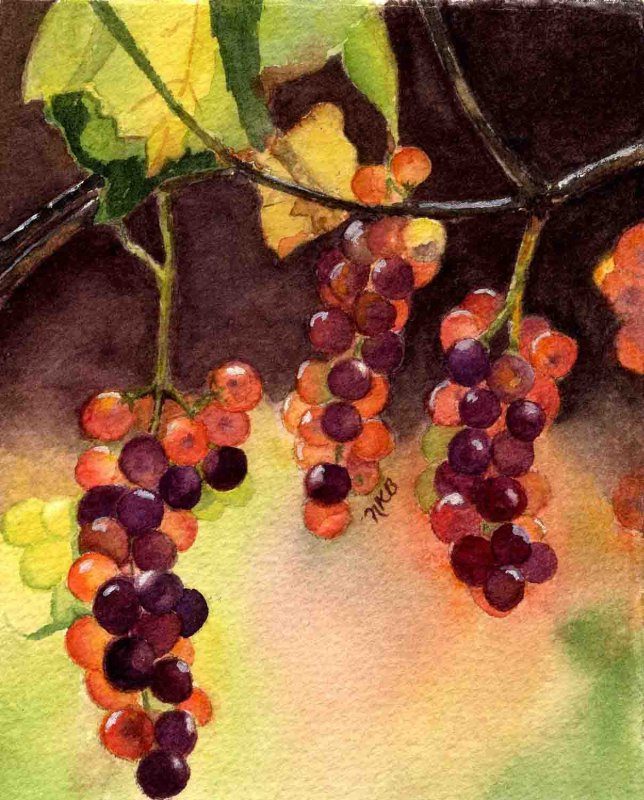 """Vino Grapes"""