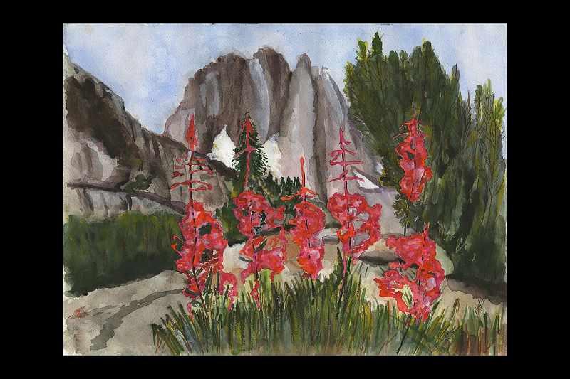 """West Spring Flowers"""