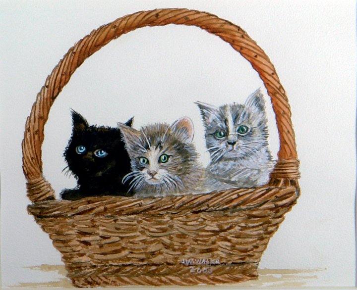 """""""Basket Full of Trouble"""""""