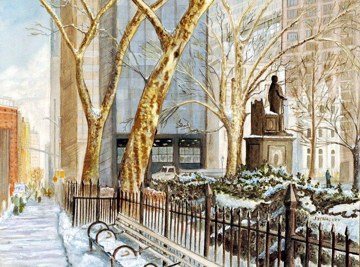 """Sycamores, Madison Square"""