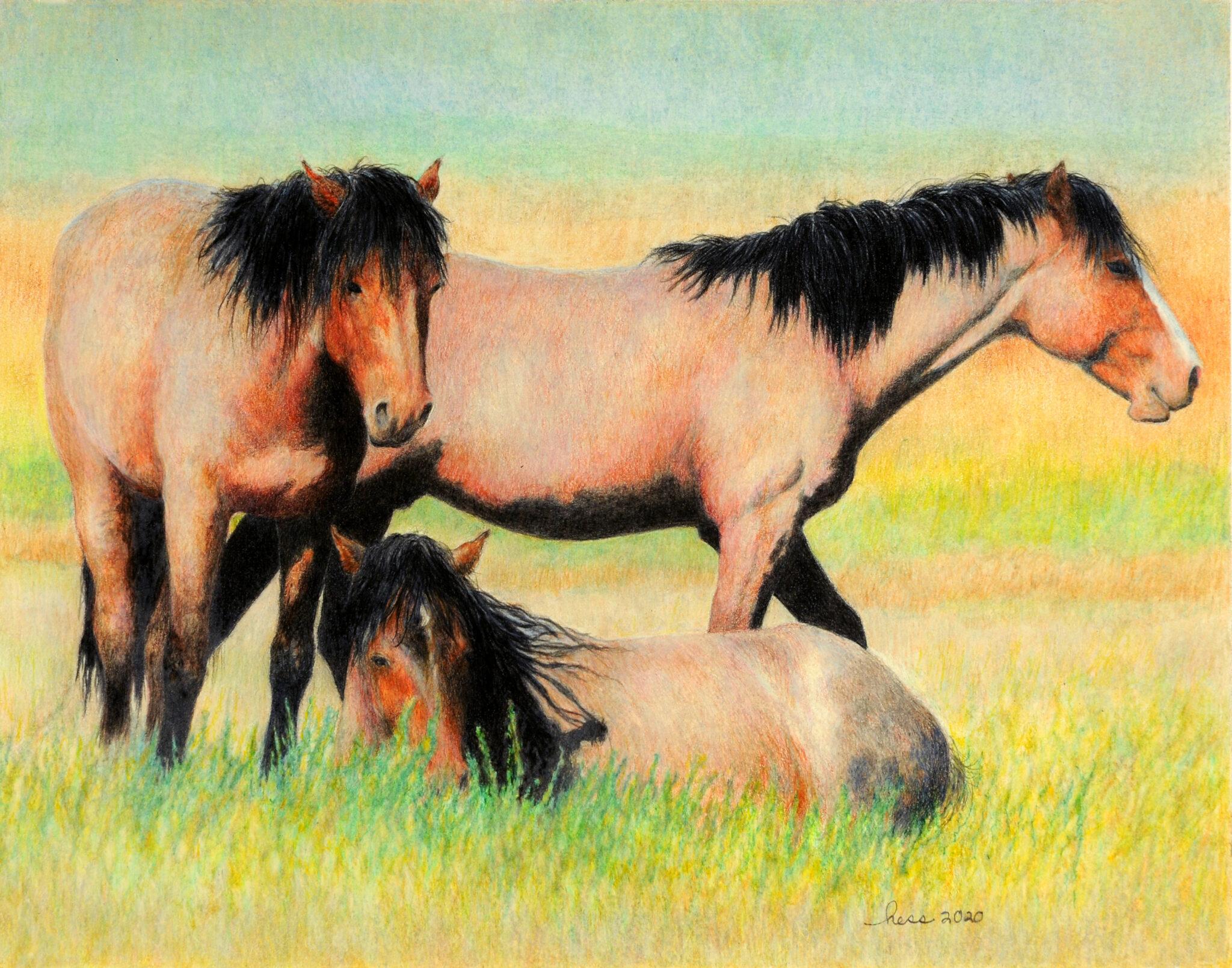 """Barbara Anne Hess #190 """"Resting Mustangs"""" $625.00"""