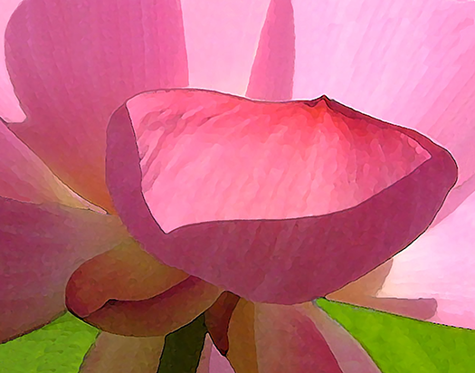 """Anne Cherry #325 """"The Lotus is Blooming"""" $140.00"""