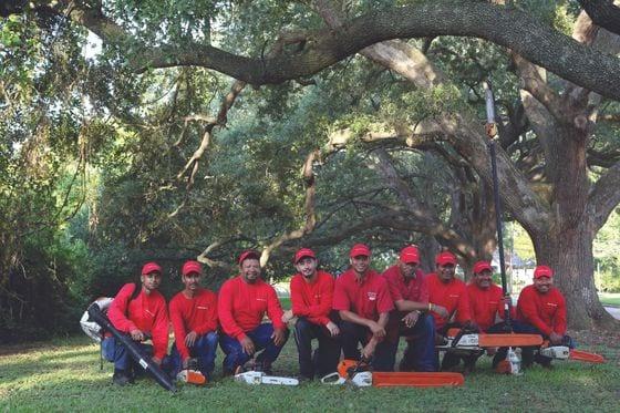 SIMPSONS TREE SERVICE INC