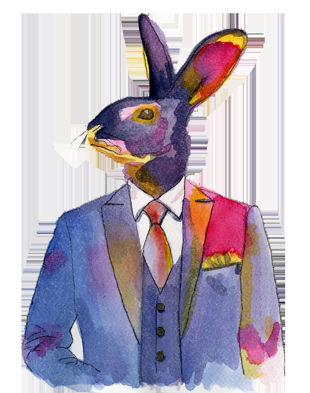 Dandy Rabbit