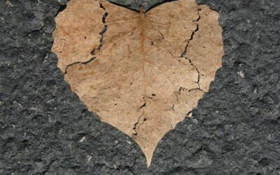 The Broken Heart of Expectations