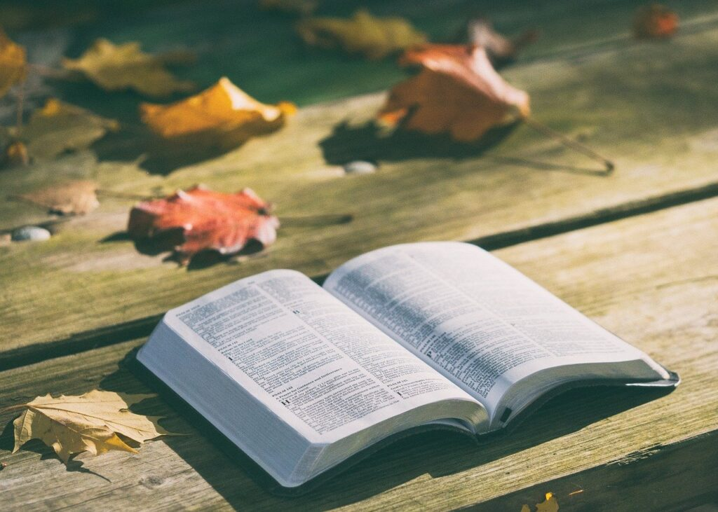 bible, book, knowledge