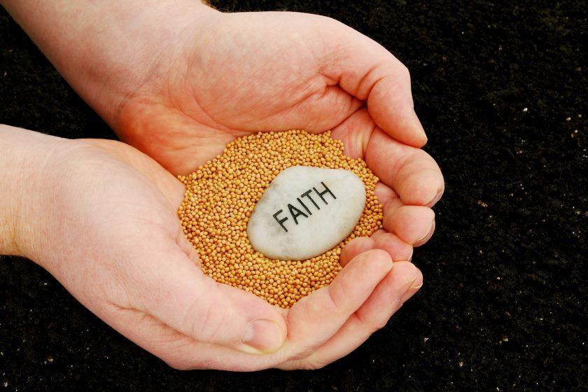 Words, Seeds, Faith