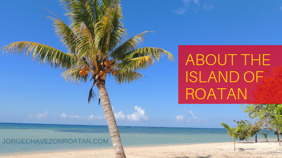 About Roatan Island Real Estate