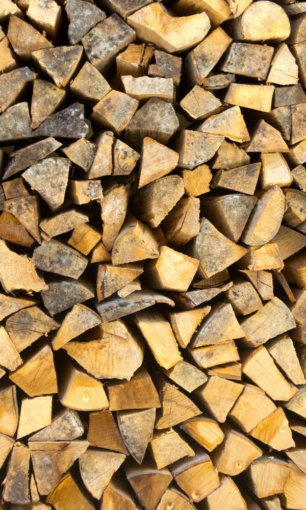 stack of seasoned firewood