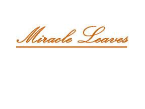 Miracle Leaves
