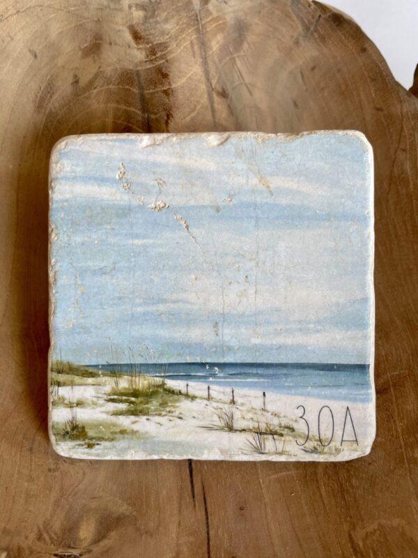 beach dunes by lee hensley
