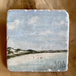 birds on beach by lee hensley