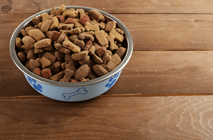 Nutritional Consulting for Dogs & Cats | Sky Canyon Veterinary Hospital | Grand Junction Colorado