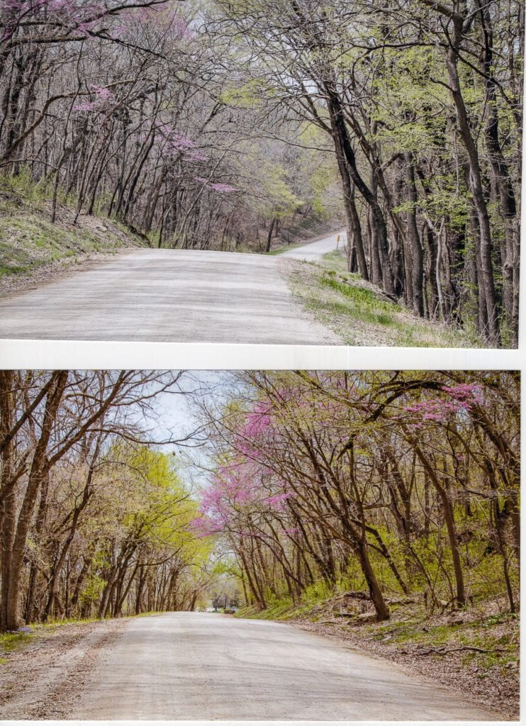 Scenic River Road, Lecompton, trees, Kansas River, BNSF