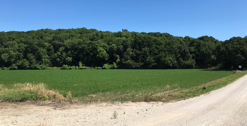The Hoch-Wald Ranch hill as it looks today.