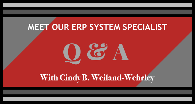ERP System Specialist