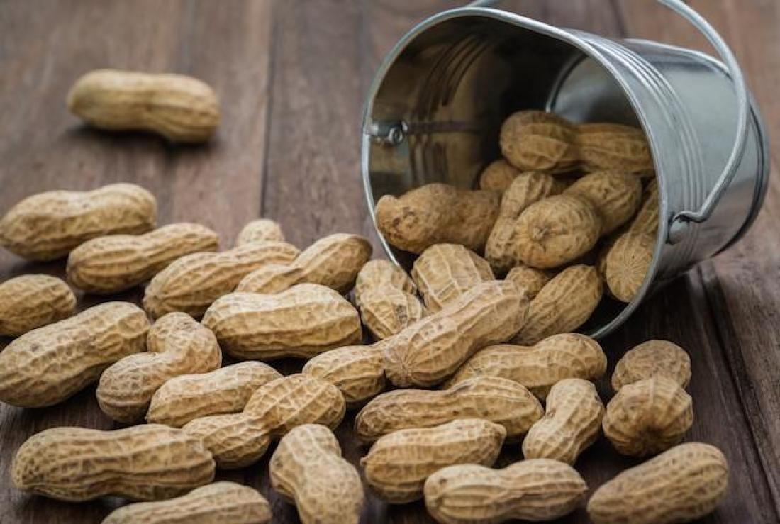 peanut facts argentinepeanuts