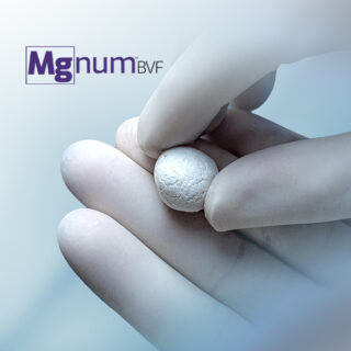 MgNum™ Bone Void Filler