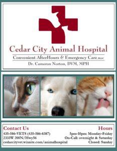 CedarCityAHospital-233x300