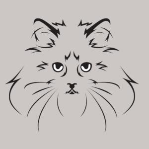 cat-1-1024x894