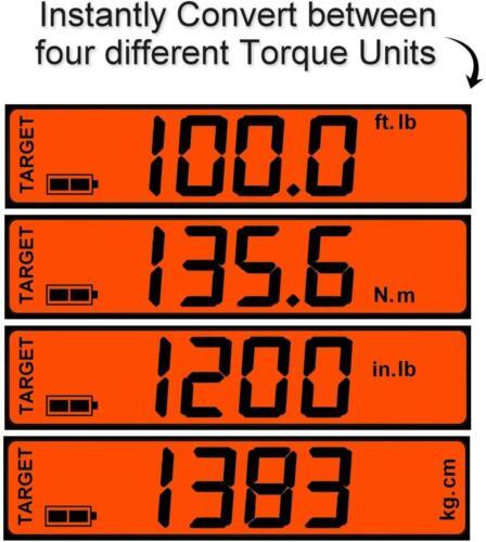 EC2100 Scale