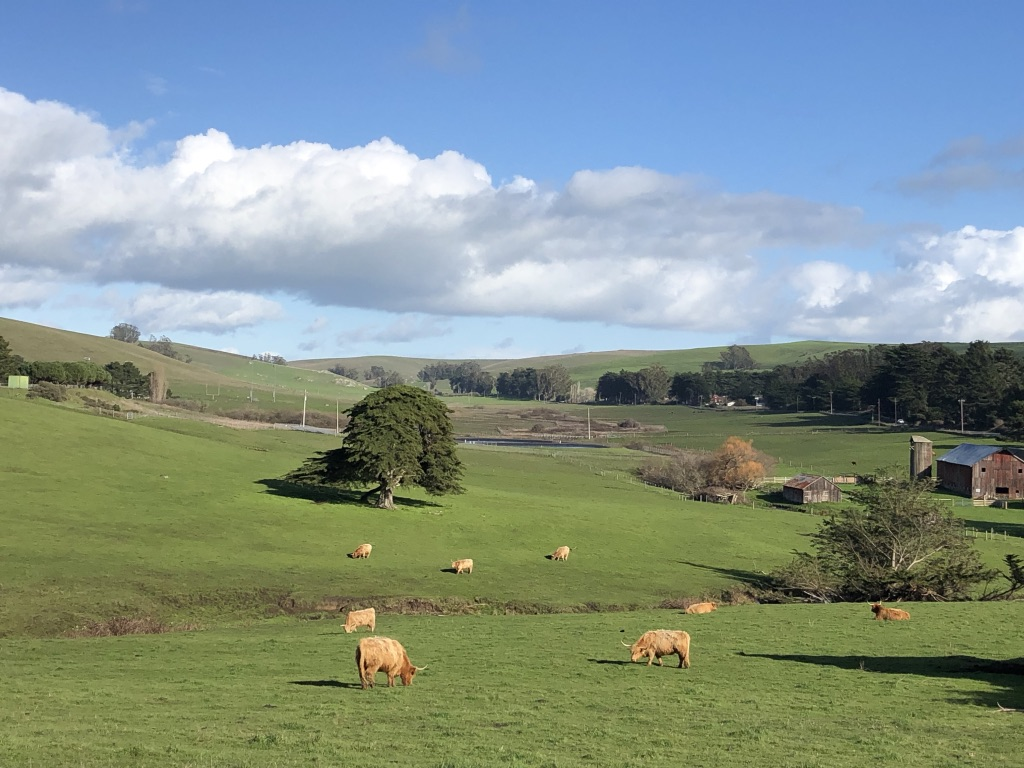 Tomales Valley, CA