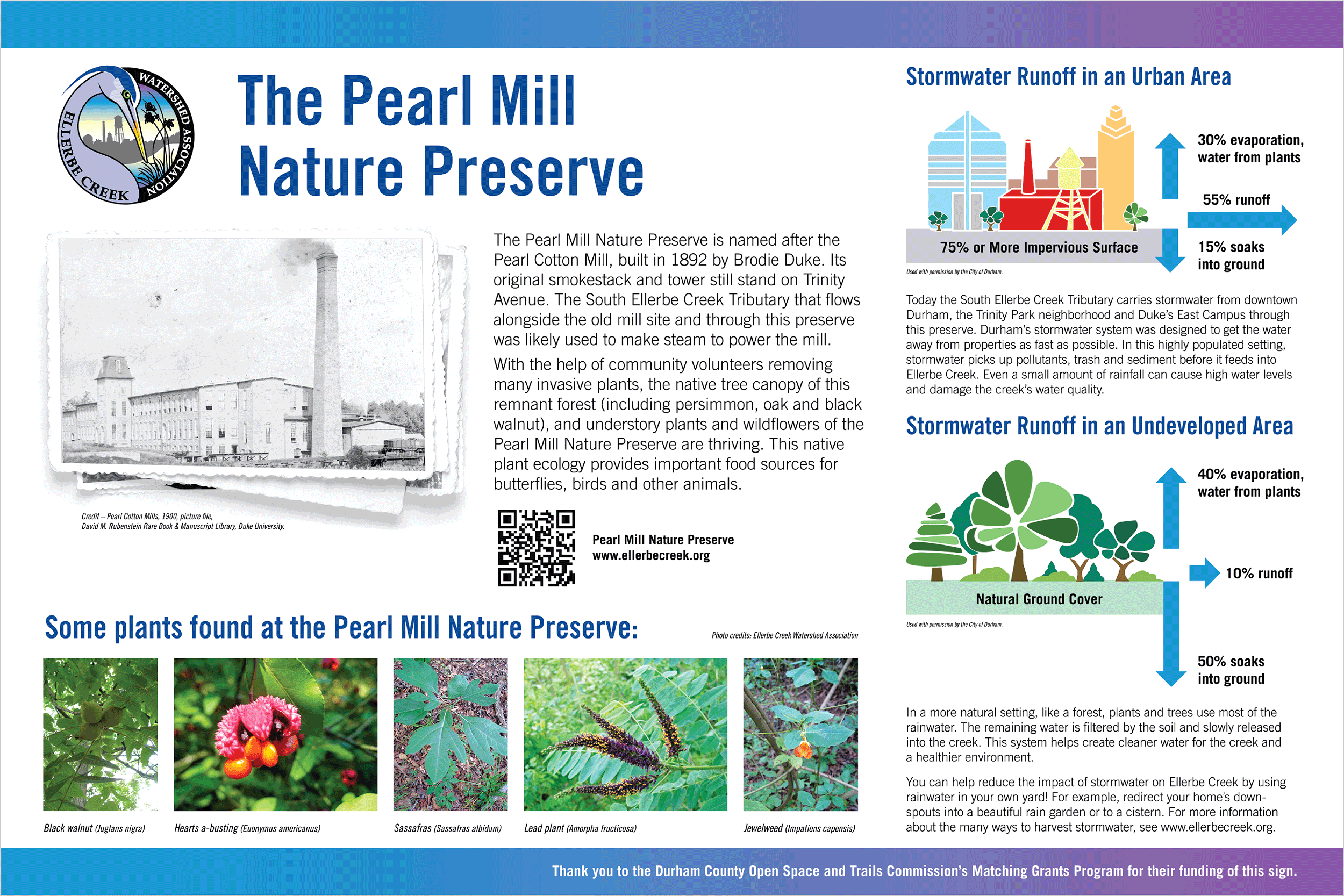 Poster design by Virtual Apiary for Ellerbe Creek Watershed Association