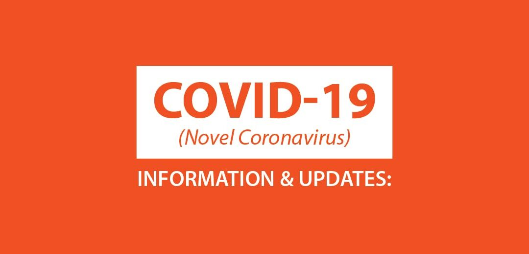 Reasons Why You Shouldn't Stop SEO Efforts During COVID-19