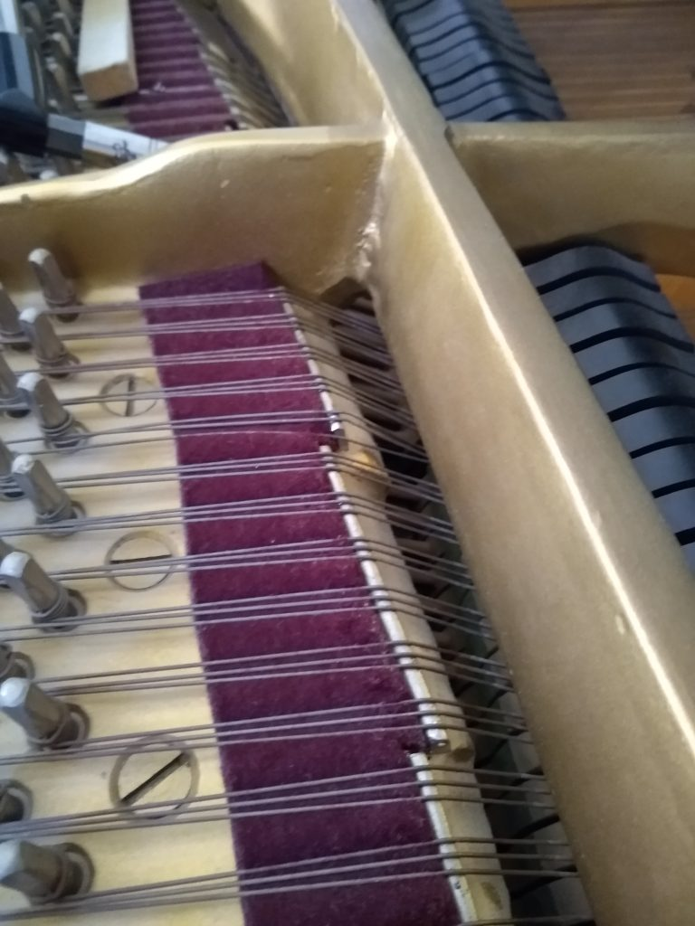 Close-up of grand piano strings and Capo D