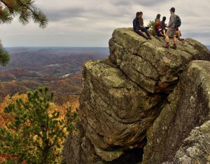 pine mountain