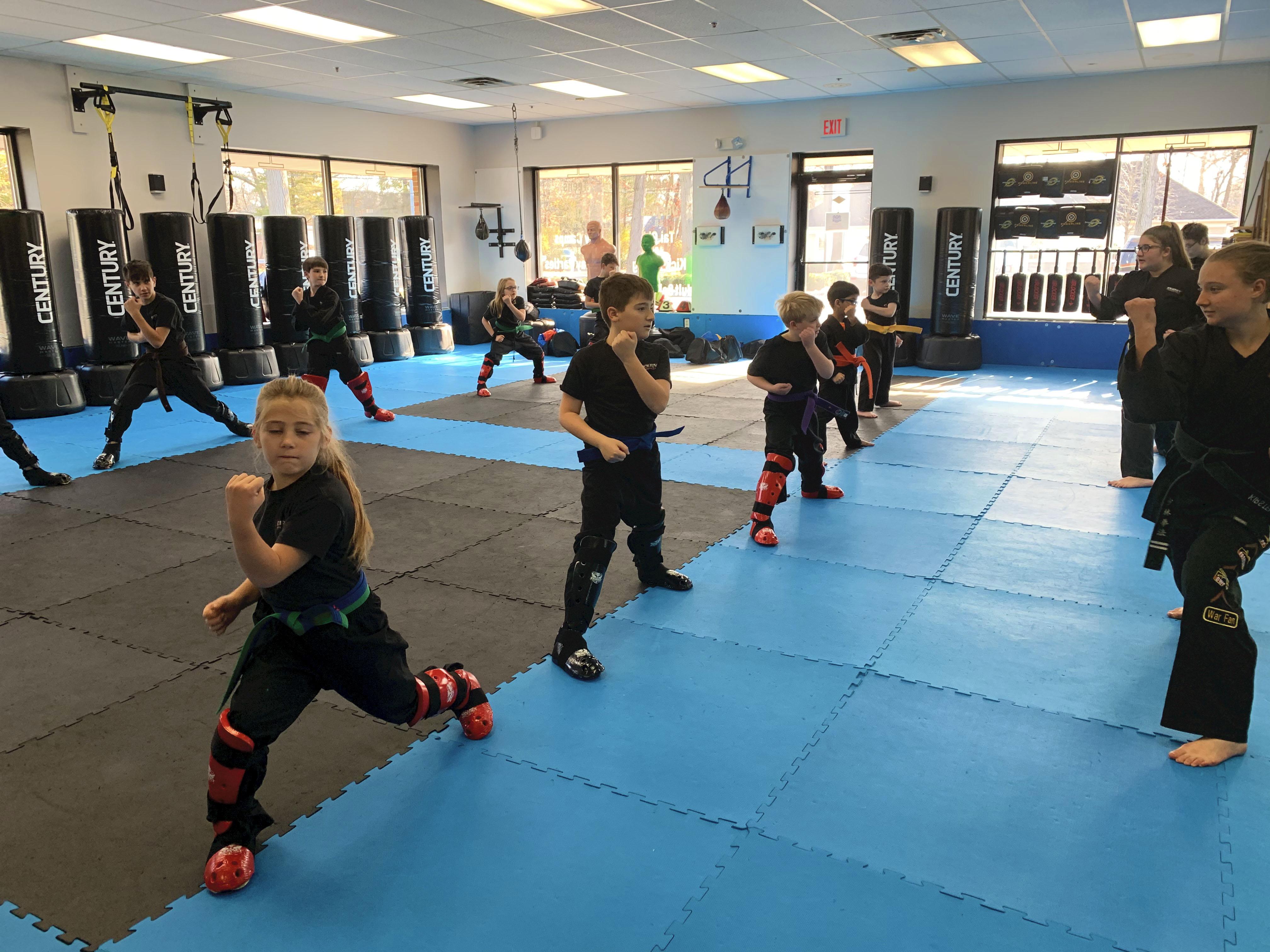 Kempo Karate Martial Arts Kids doing basics