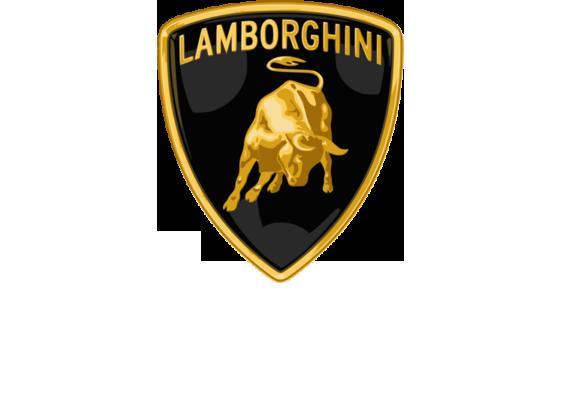 Lamborghini Logo - Large - White