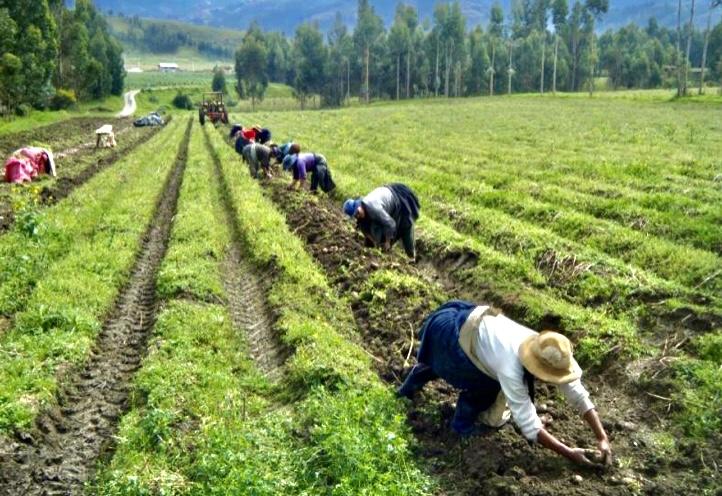 SUB REGISTRO DE LA DEUDA DE LA REFORMA AGRARIA: CÓMO UTILIZAR LEYES DEROGADAS Y CREER QUE NADIE SE DARÁ CUENTA…