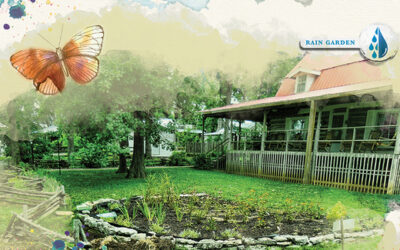 Take Charge of Your Water with a Raingarden