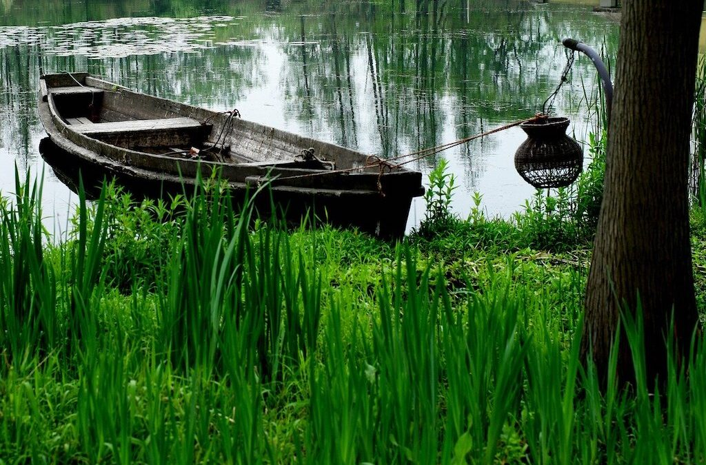photo of canoe tied up on grass bank