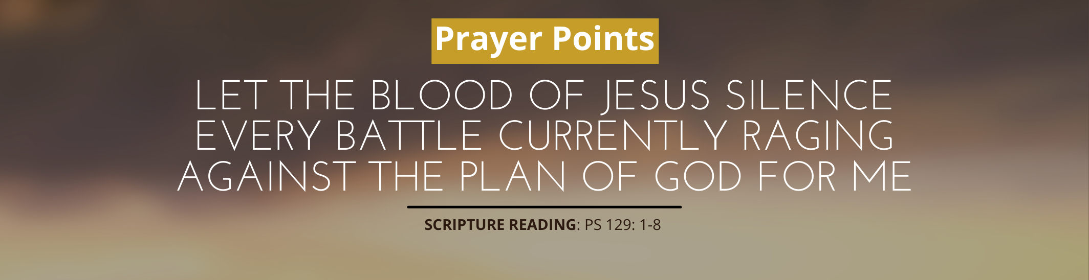 Let The Blood Of Jesus Silence Every Battle Currently Raging Against The Plan Of God For Me