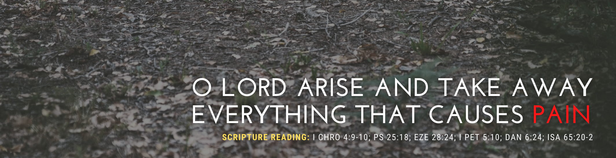 O LORD ARISE AND TAKE AWAY EVERYTHING THAT CAUSES PAIN