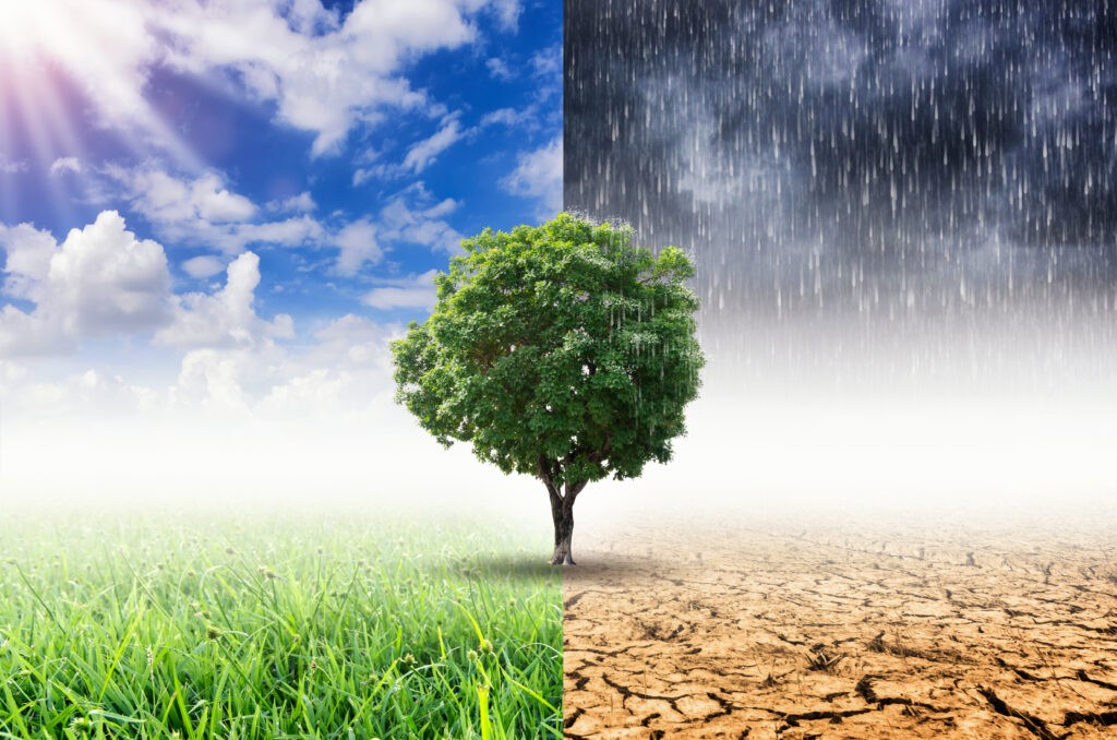 Business Climate Resilience