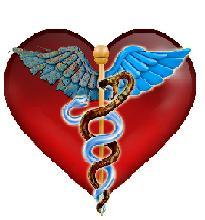 The_Healthcare_Movie