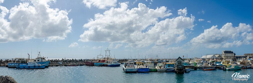 Princess Alice Harbour Bridgetown Barbados