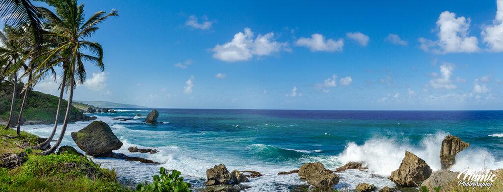 Martin's Bay Barbados Photographers