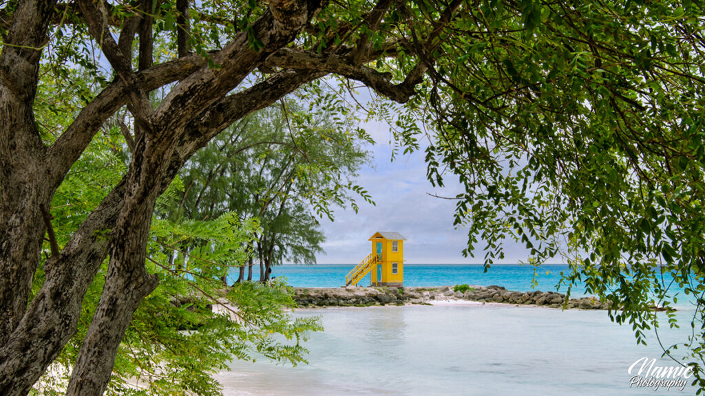 Miami Beach Barbados