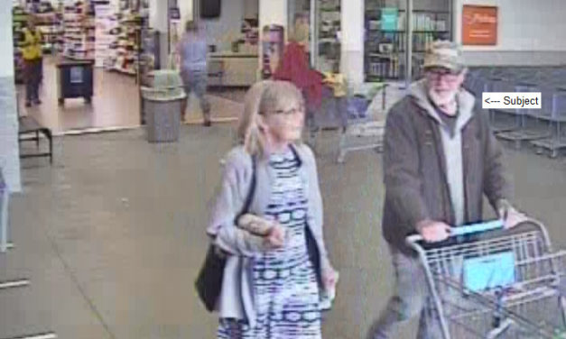 Hemlock Township Police searching for 2 people for unknown investigation