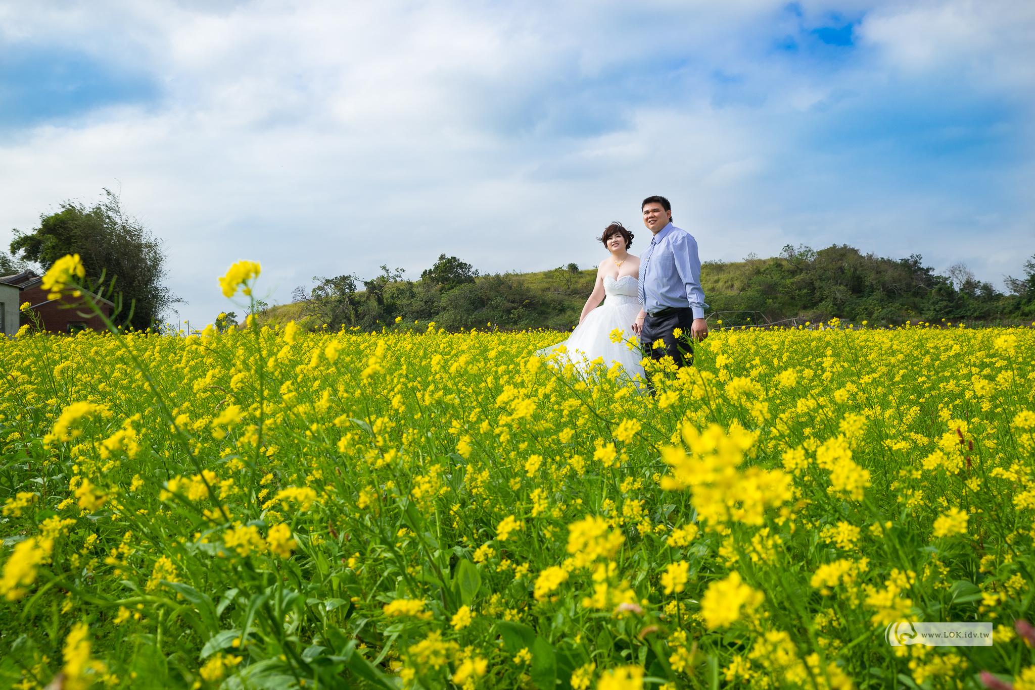 喆學之獅、哲學之視、婚攝、婚禮記錄