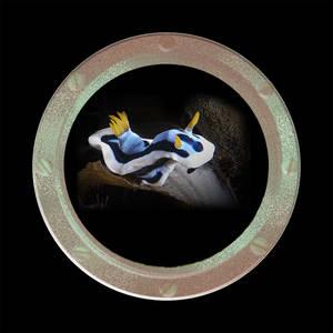 Coaster-Annae #2