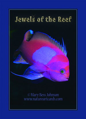 Playing Card - Jewels Of The Reef Back
